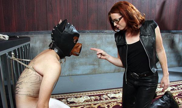 Femdom Puppy Torture